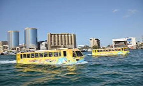 Dubai city Bus Tour Packages