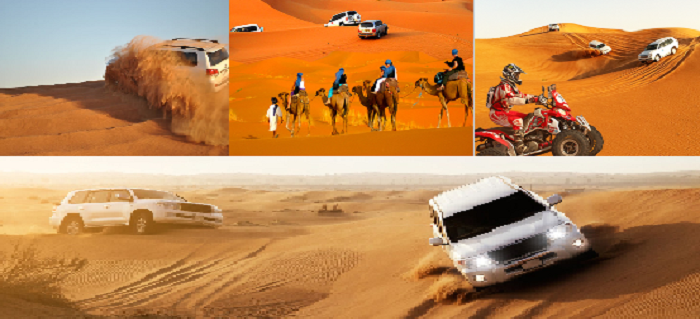 Image result for Morning desert safari